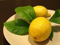 Польза лимона для здоровья