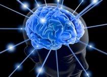 5 способов с отличными отзывами, чтобы улучшить работу мозга