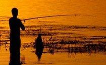 Чем полезна рыбалка?