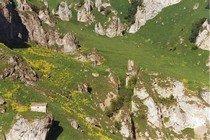 Шатой - горный район Чечни