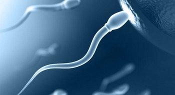 Основные показания к анализу спермы