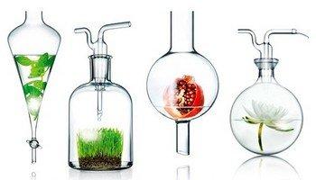 Производство органической косметики из натуральных ингредиентов