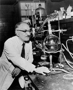 Зельман Ваксман первый синтезировал стрептомицин