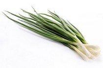 Польза и калорийность зеленого лука