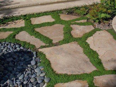 Английский стиль дорожки в саду