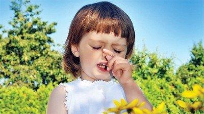 Поллиноз (по-другому сенная лихорадка) - сезонный аллергический ринит
