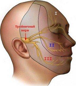 Нарушения чувствительности при невралгии тройничного нерва