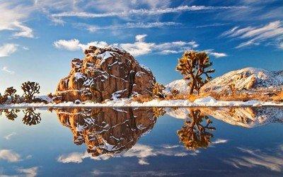 Каковы особенности национального парка Джошуа-Три