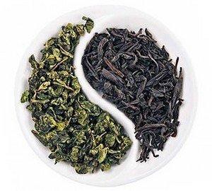 Зеленый и черный чаи являются разными сортами - это ложь