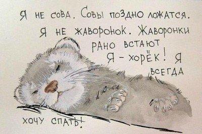 Не плохо быть «хорьком», если есть возможность))))