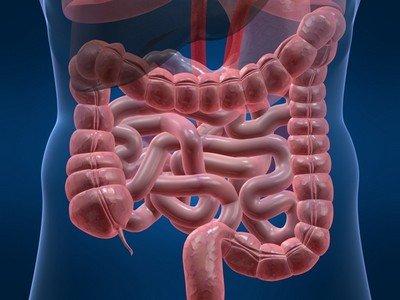 Как классифицируют кисты брыжейки кишечника