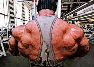 Правильное выполнение упражнений для роста мышц