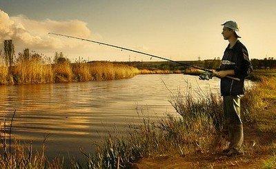 Прикормки и ее виды для рыбалки