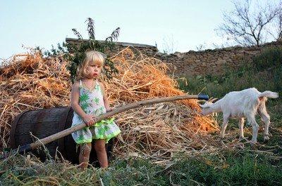 Детям на отдыхе в деревне никогда не бывает скучно, ведь вокруг столько интересного