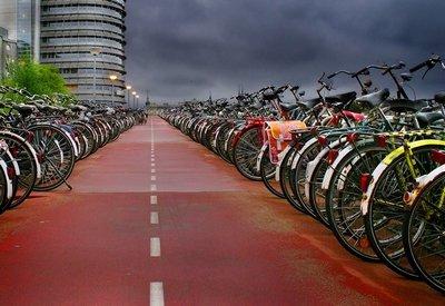 Правила выбора велосипеда в океане предложений