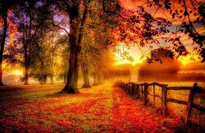 Осень - это настоящая красота красок