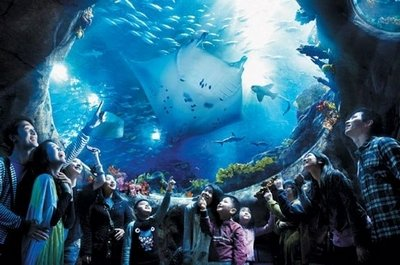 Океанариум Синао, находящийся недалеко от города Бэйдайхэ