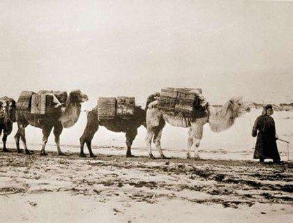Первая советская медико-санитарная экспедиция русских врачей в Монголию