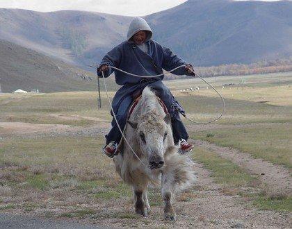 Араты - население Монголии