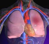 Основные симптомы разных видов отеков легких