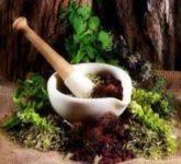 Лечебные вина на основе лекарственных трав