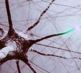 Принципы лечения невритов