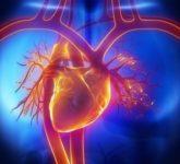 Наблюдение за деятельностью сердца у больных