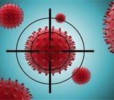 Неспецифический иммунитет: Клетки иммунной системы