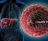 О гепатите В простыми словами